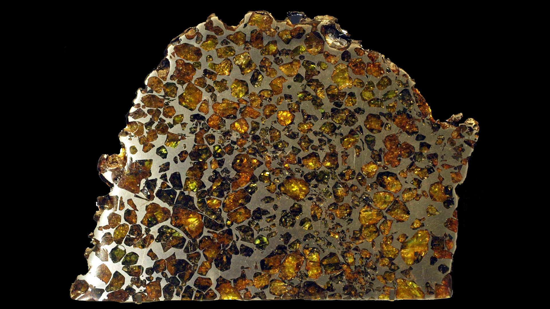 Pallasite Meteorite - Original Photograph by Captmondo