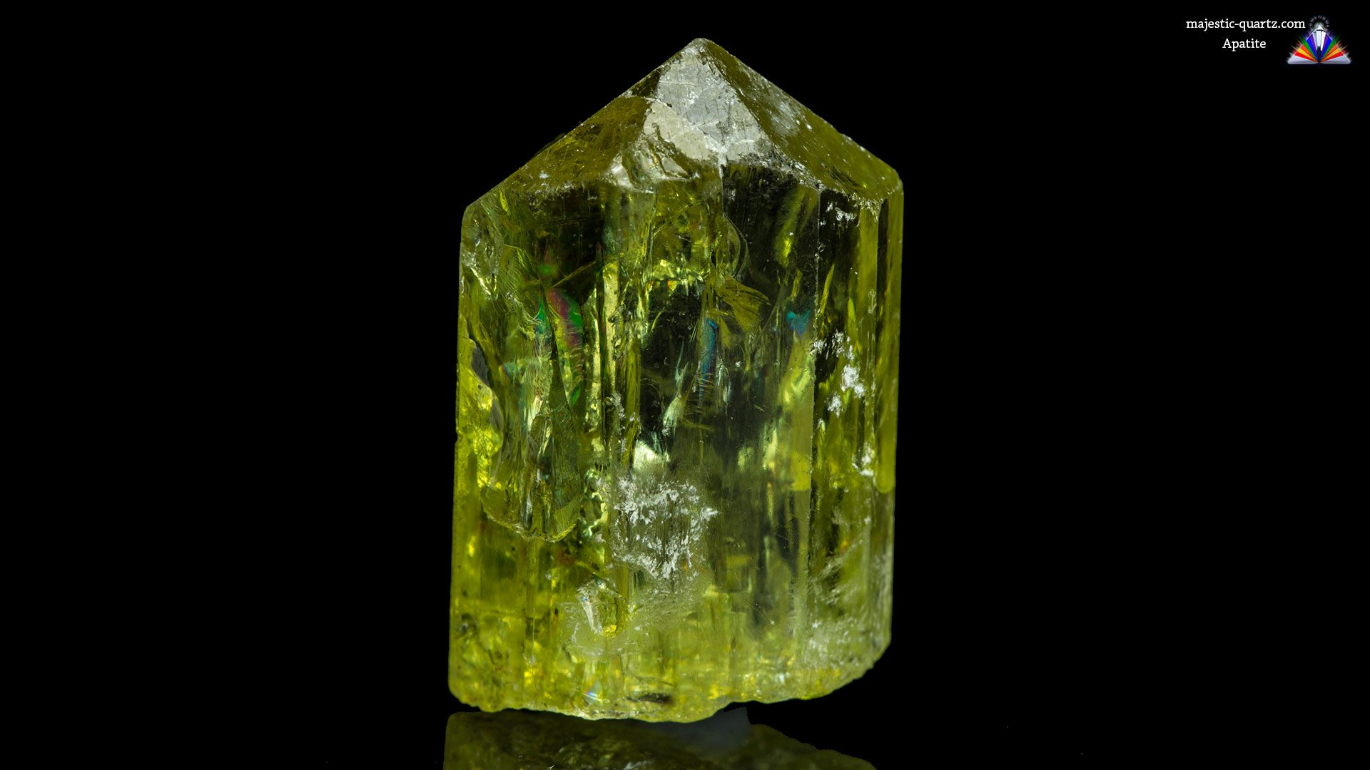 Terminated Apatite Crystal - Photograph By Anthony Bradford