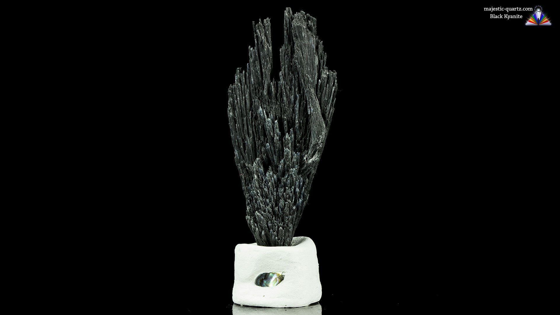 Terminated Black Kyanite Mineral Specimen - Photograph by Anthony Bradford