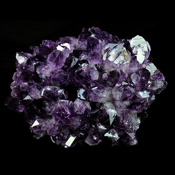 Amethyst flowers Properties and Meaning