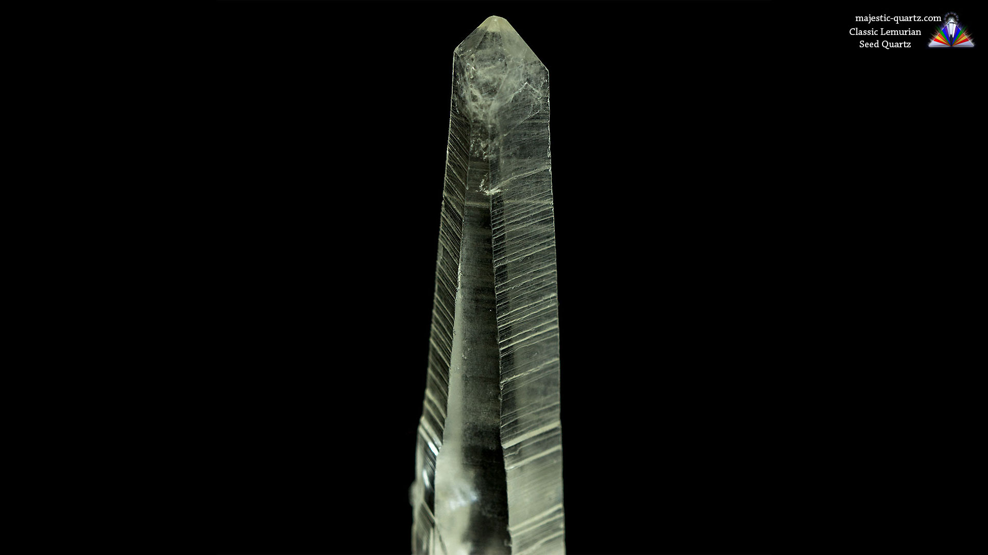 Lemurian Seed Quartz Properties and Meaning + Photos