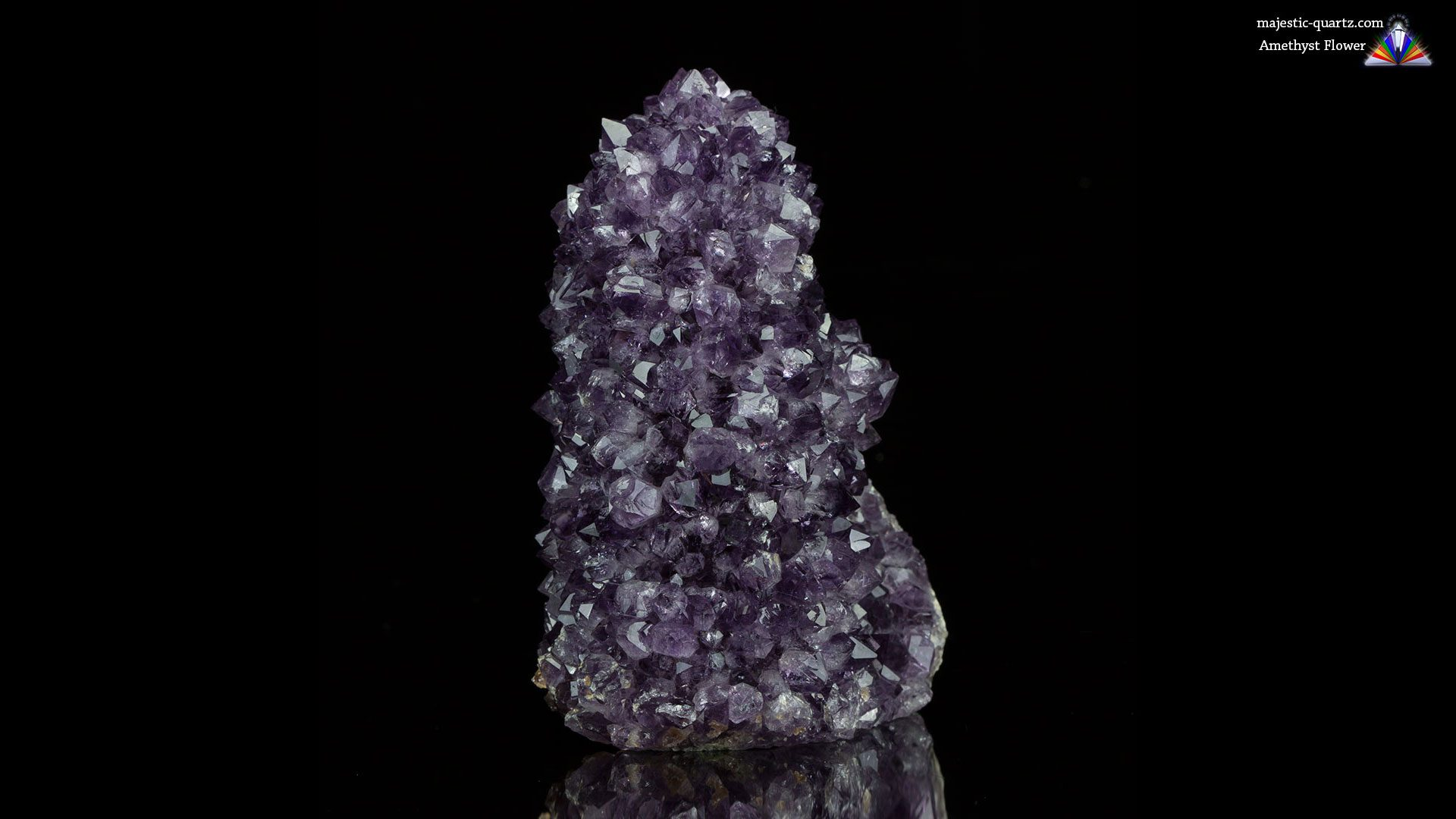 Amethyst Flower Specimen - Photograph by Anthony Bradford