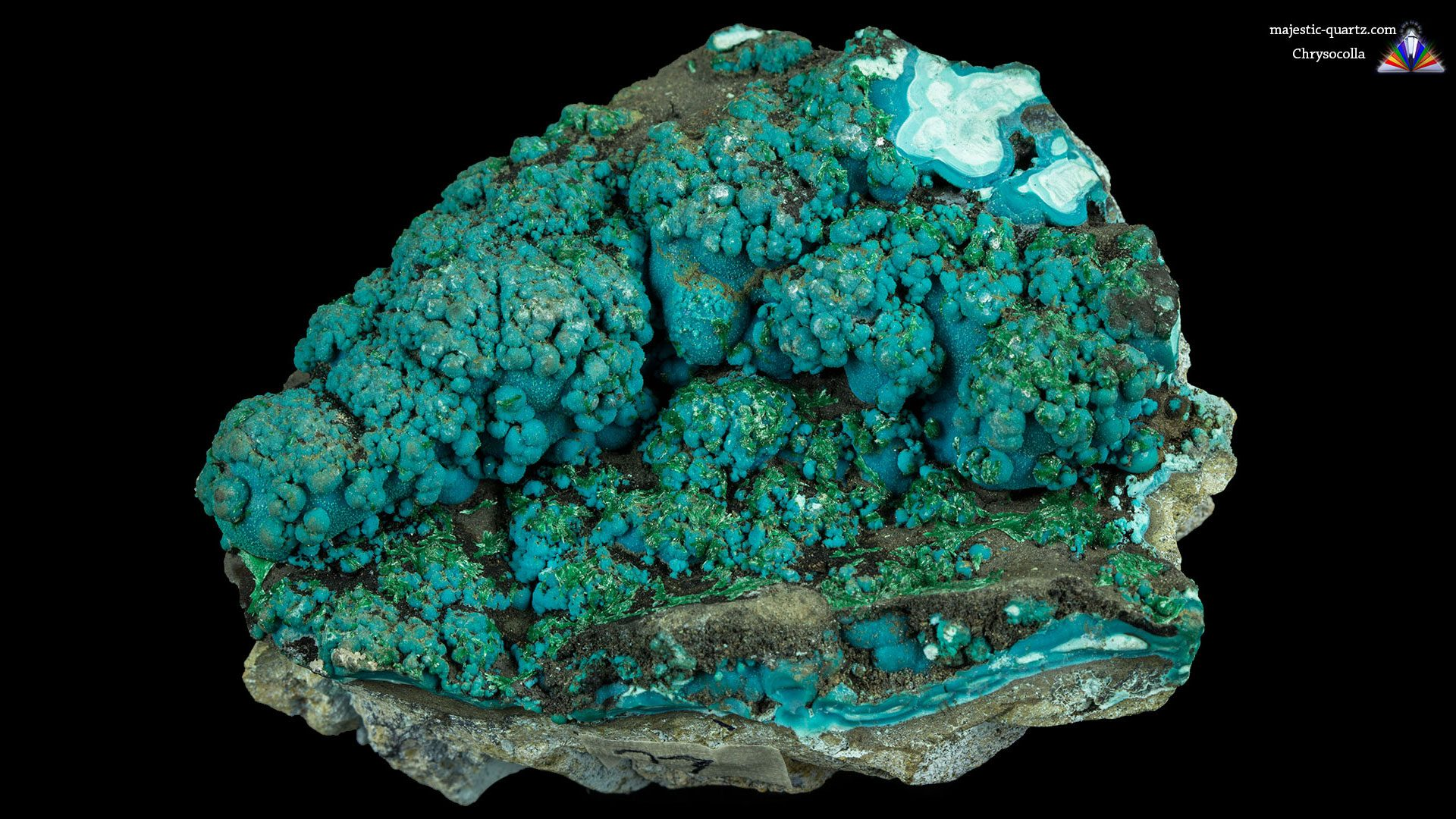 Chrysocolla Crystal Specimen - Photograph by Anthony Bradford