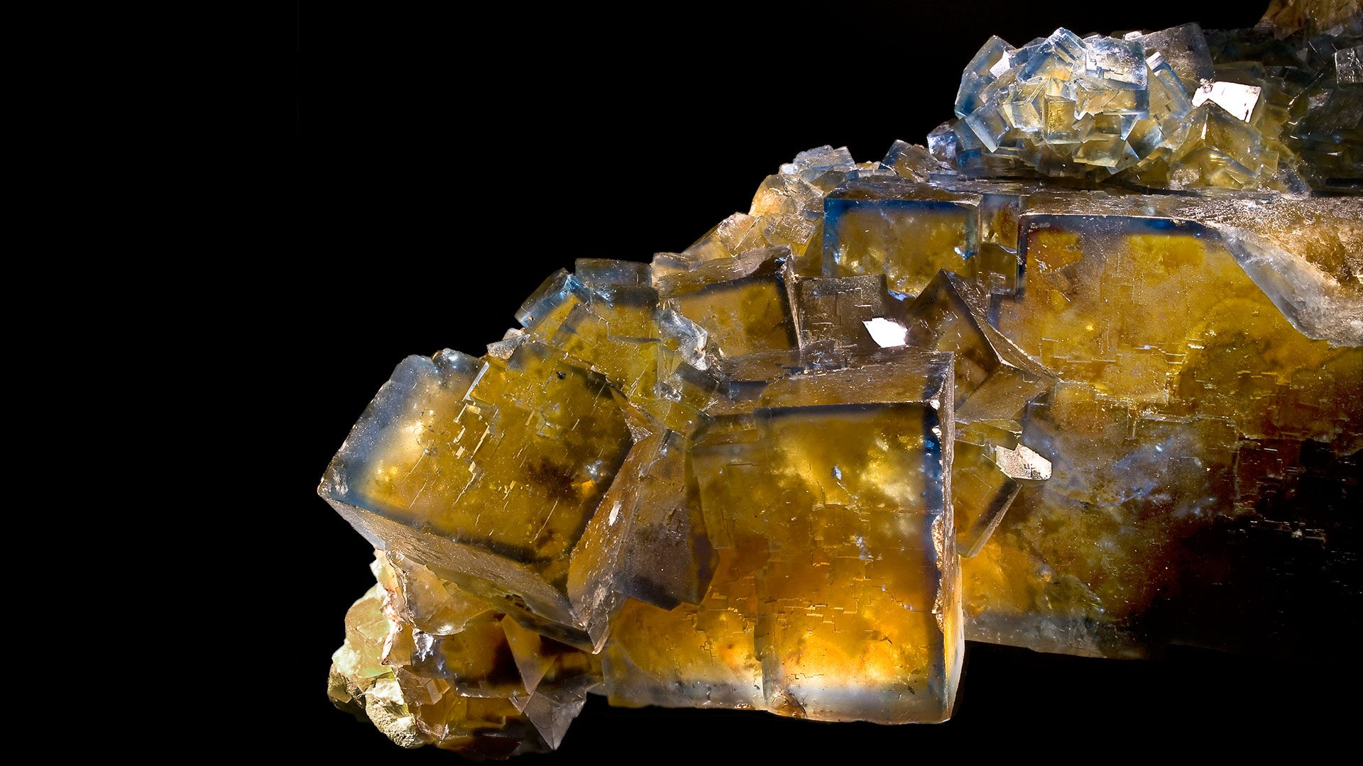 Gold Fluorite Cluster Specimen - Photograph by Didier Descouens