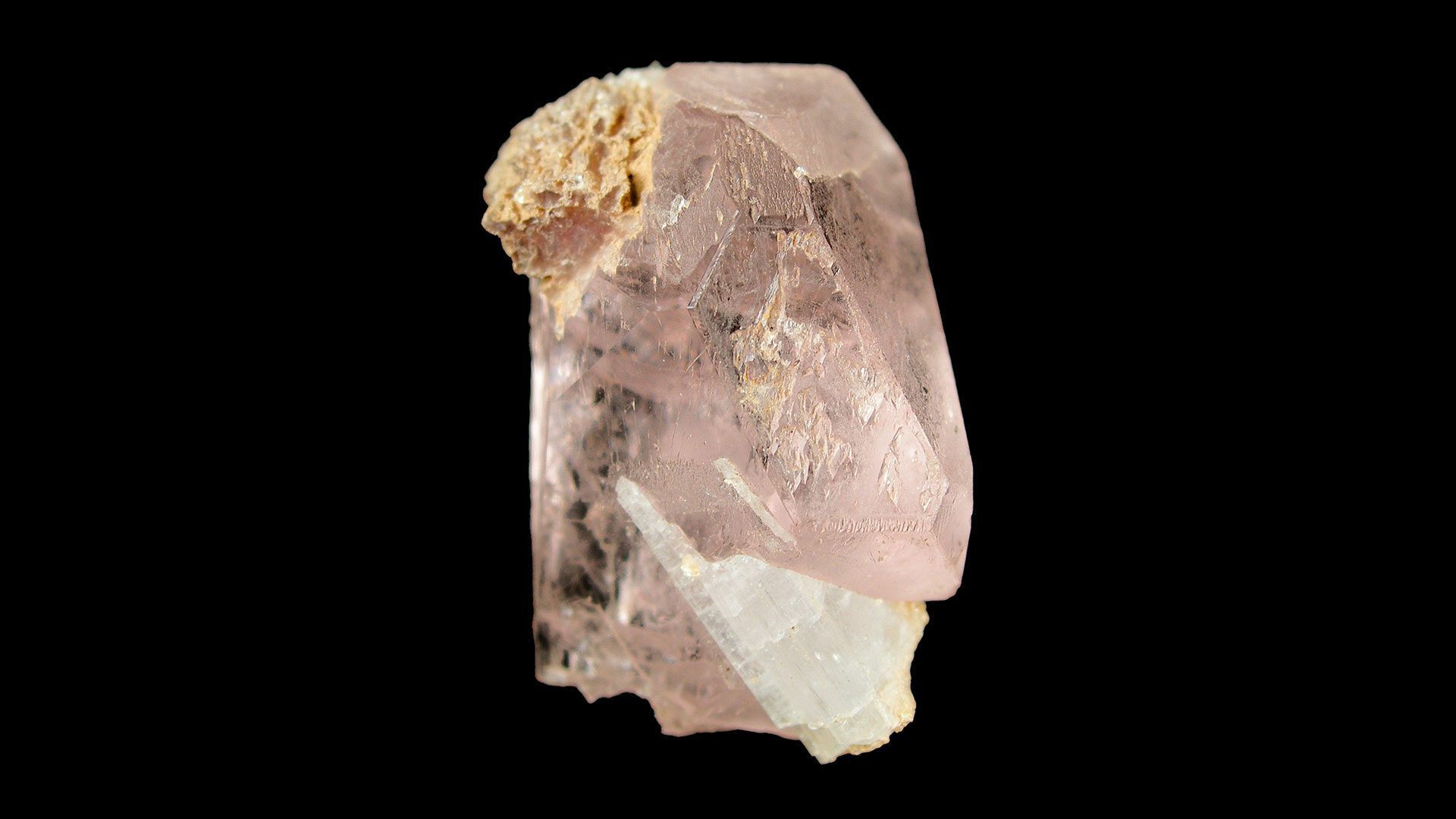 Morganite Crystal Specimen - Photograph by Rob Lavinsky, iRocks.com