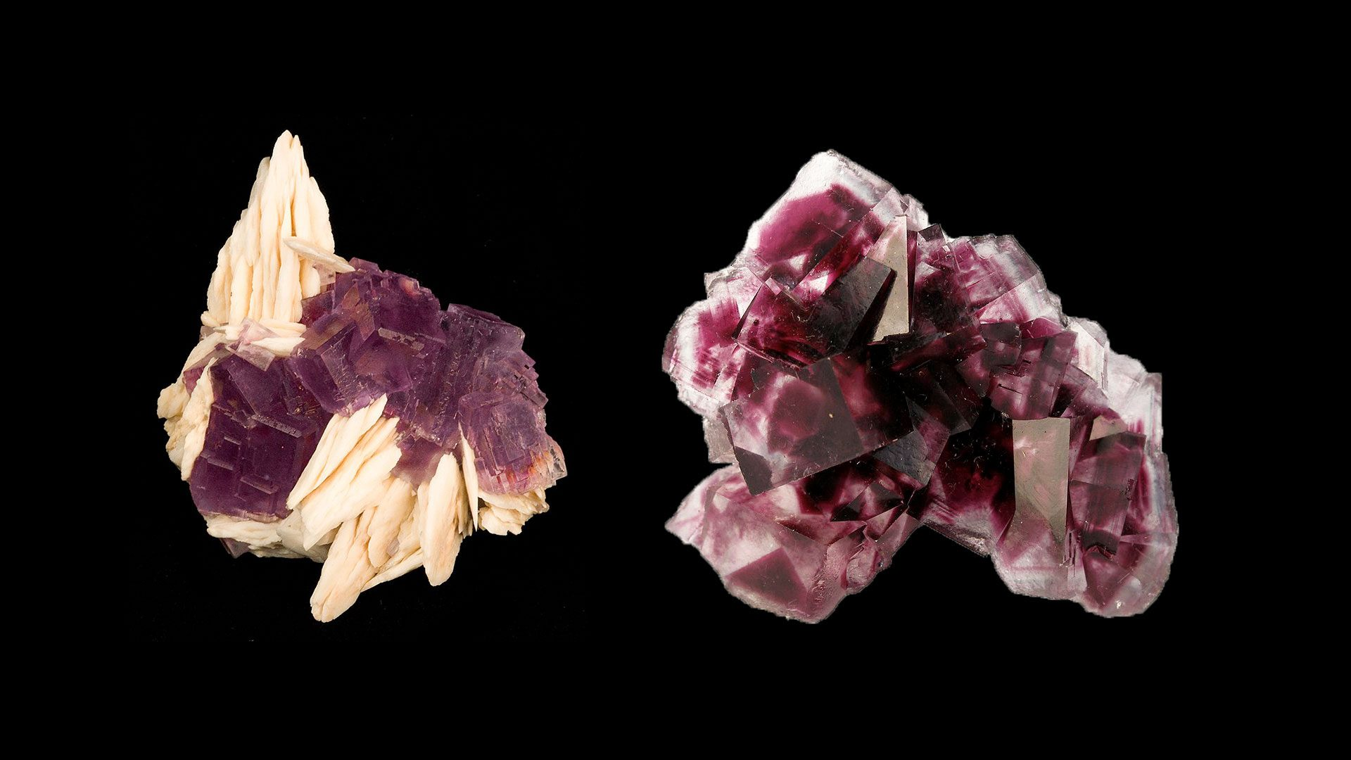Pink Fluorite Crystal Specimens - Original Photographs by Rob Lavinsky, iRocks.com